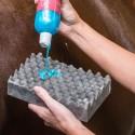 Blue Hors Magic Sponge
