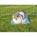 Køleplade til små dyr 28 x 20 cm blå