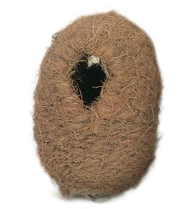 Troperede i kokos stor