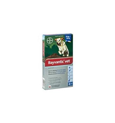 Bayvantic Vet. hund 25-40 kg, 4x4,0ml