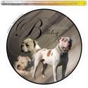 Dekal Rund Amerikansk Bulldog tre hunde