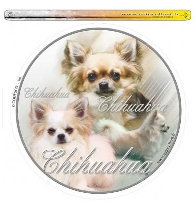 Dekal Rund Chihuahua