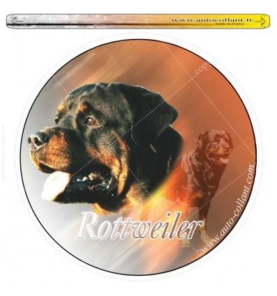 Dekal Rund Rottweiler