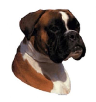 Dekal Boxer Rød/Hvid Stor ca. 17 cm.
