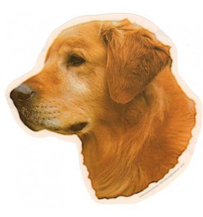 Dekal Golden Retriever Stor ca. 17 cm.