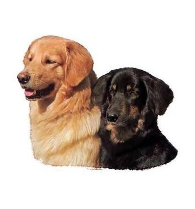 Dekal Hovawart To Hunde Stor ca. 17 cm.