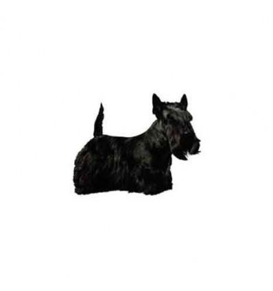 Dekal Skotsk Terrier Helfigur Stor ca. 17 cm.