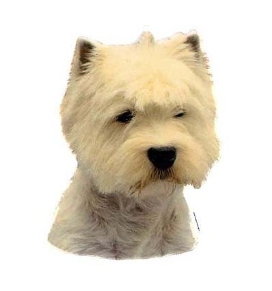 Dekal West Highland White Terrier Stor ca. 17 cm.
