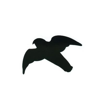 Rovfugle siluetter
