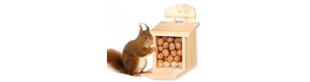 Egern og pindsvin