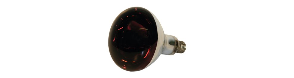 Varme lamper og pære